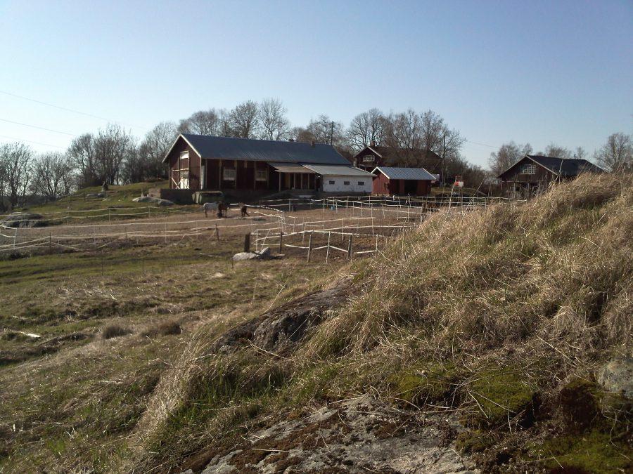 Trang trại mùa xuân