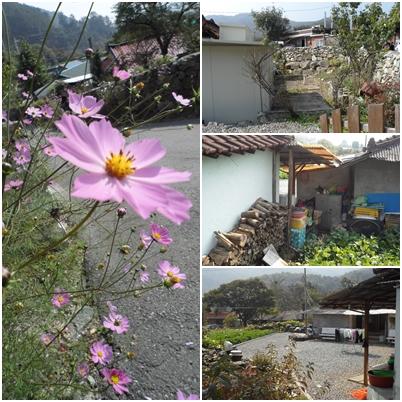 Farm village 5